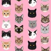 Rcat_faces_pink_shop_thumb