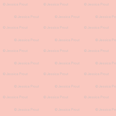 Briar Woods Solid Pink