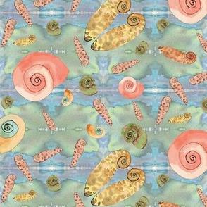 Underwater Mollusks