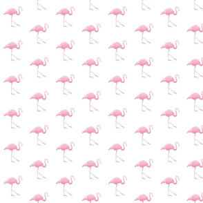large flamingo - pink