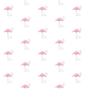 small flamingo - pink