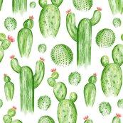 Rcactus_garden_1_flat_300__shop_thumb