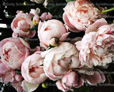 Dark Floral 2
