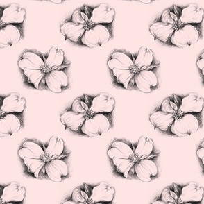 Elegant Dogwood Drawing in Pink