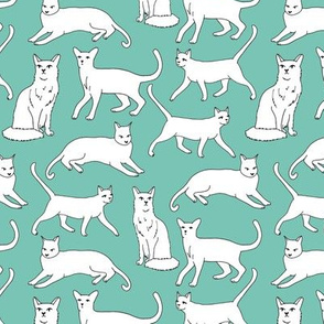 cats // mint and white cat kitten kitty cute cats hand-drawn illustration cats