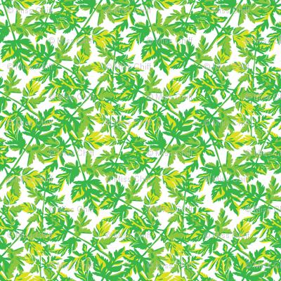 Green Fern Carrot Leaf_Miss Chiff Designs