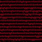 genome - 03