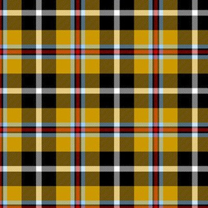Cornish Tartan // Small