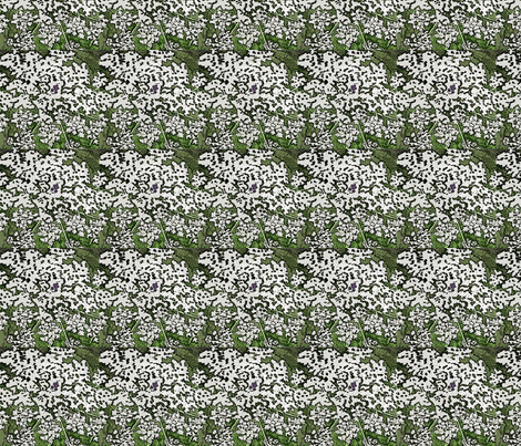 wc_queen_ann_2 fabric by leroyj on Spoonflower - custom fabric