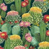 Cactus-seamless-1_shop_thumb