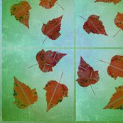 Umbre_leaves_on_green__shop_thumb