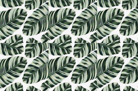 Rtropical-foliage-pattern_19x19_shop_preview
