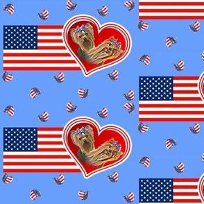Yorkie on American flag