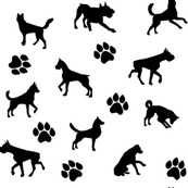Dogs and Paws - White and Black