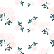 Sweet roses | Pink and celadon green