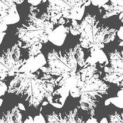 Rleaves_pattern_black-11_shop_thumb