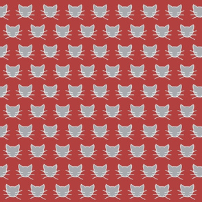 Gray cat on soft red
