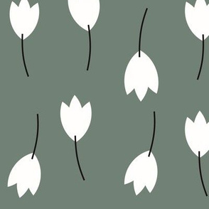 Tulips flowers white on smokey green || by sunny afternoon