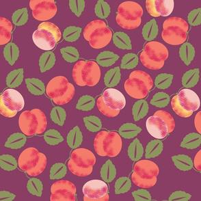 abricot_L
