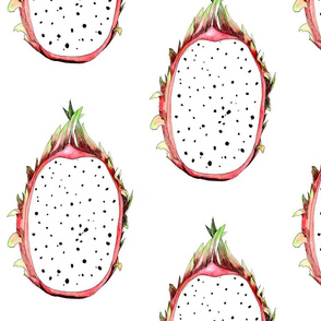 Dragon Fruit Illustration