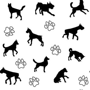 Black Dogs n Paws