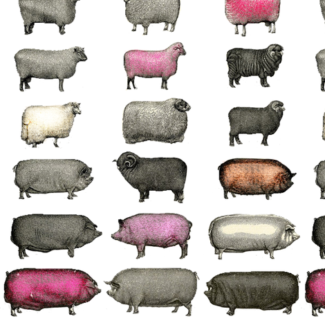 Sheep and Pigs Large fabric by janinez on Spoonflower - custom fabric