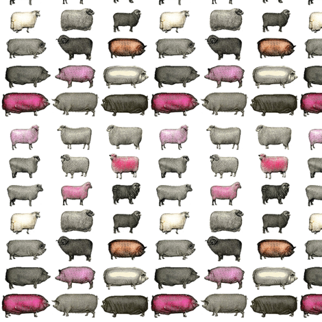 Sheep and Pigs Small fabric by janinez on Spoonflower - custom fabric