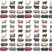 Rsheeps_and_pigs_pink_1a_shop_thumb