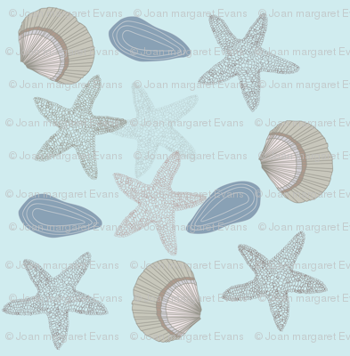 starfishshells