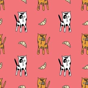 Cats & Croissants
