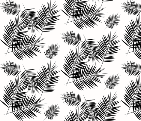Palm leaf black and white monochrome palm leaves palm tree tropical summer beach