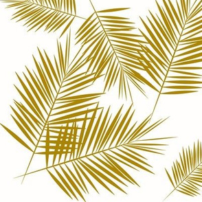 Palm leaf Palm tree  - palm leaves mustard golden on white tropical summer beach || by sunny afternoon