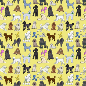 poodles_yellow