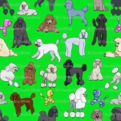 poodles_lime