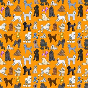poodles_orange