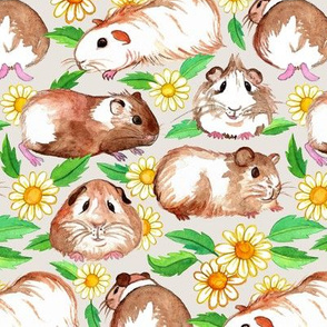 Guinea Pigs and Daisies in Watercolor on Light Tan