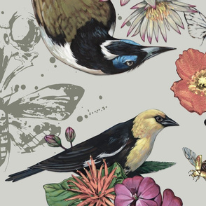 Floral and Fauna of Pittsburgh Museums