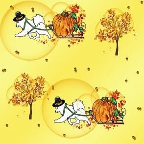 Pilgrim Samoyed Bringing the Pumpkin Home