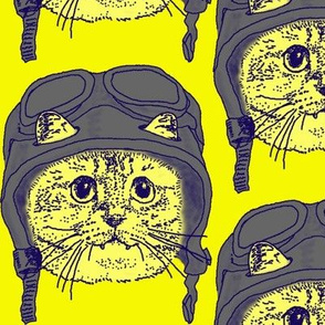 Moto Kitty on Yellow