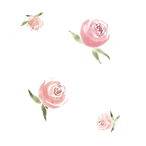 Delicate Pink Watercolor Roses