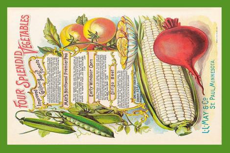 tea towel vintage vegetables fabric by stofftoy on Spoonflower - custom fabric