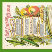 Rrrrvintage-vegetables-996390_960_720_shop_thumb
