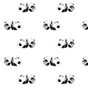 Graphic panda baby