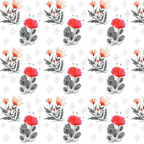 Desert Blooms