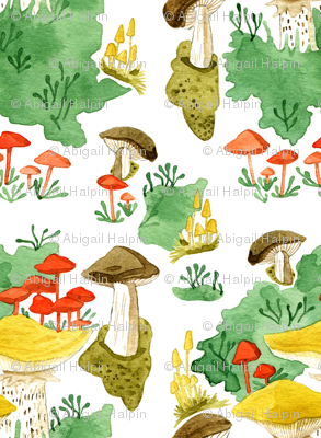 Woodland Mushrooms