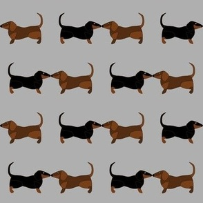 Dachsies Repeat