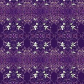 paperwhites on purple