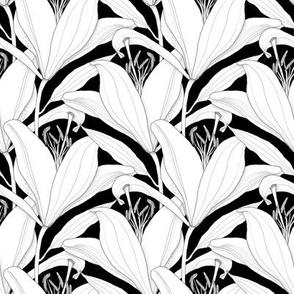 White_Lilies