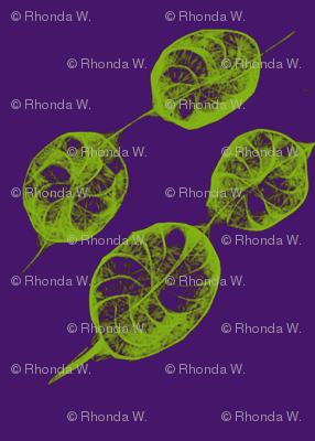 Rolling Rings of Leafy Links on Purple Grape - Small Scale