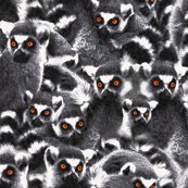 Rplenty_lemurs_shop_thumb